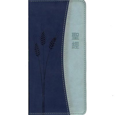 2-Tone Blue Pocket Bible