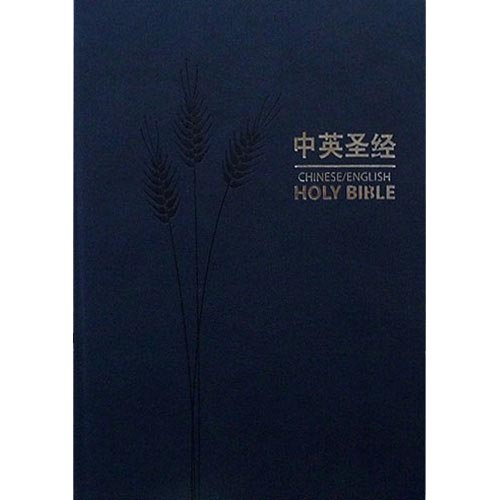 Simplified Chinese-English Bible